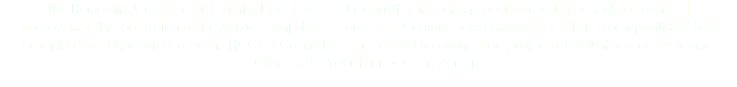 The Hampshire Coon Creek Country Days (HCCCD) Committee is a group of citizen volunteers who organized and oversee the operation of the Annual Hampshire Coon Creek Country Days Festival. HCCCD is a non-profit 501(c)3 organization duly operated by the HCCCD Committee. The festival is a very large project, all volunteers are welcome. Click on the Volunteer page to sign up.